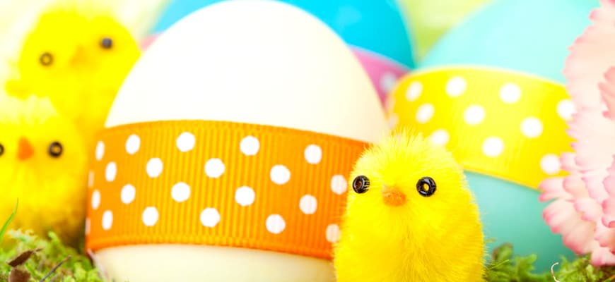 easter-eggs-n-chicks